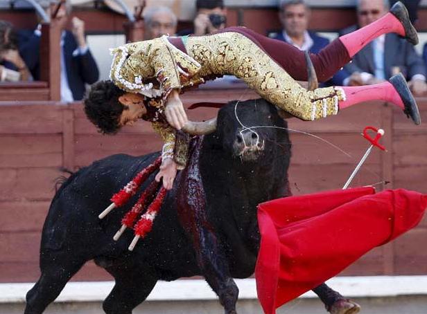 http://lesazas.files.wordpress.com/2013/01/corrida.png?w=917&h=675