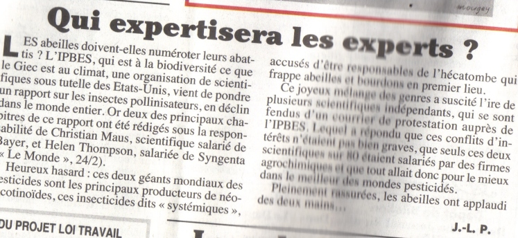 experts abeilles