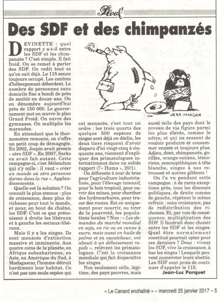 sdf-et-chimpanzes